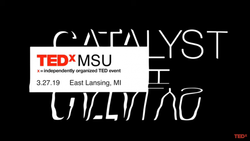 The Universe Inside Ourselves | Mike Pajkos | TEDxMSU
